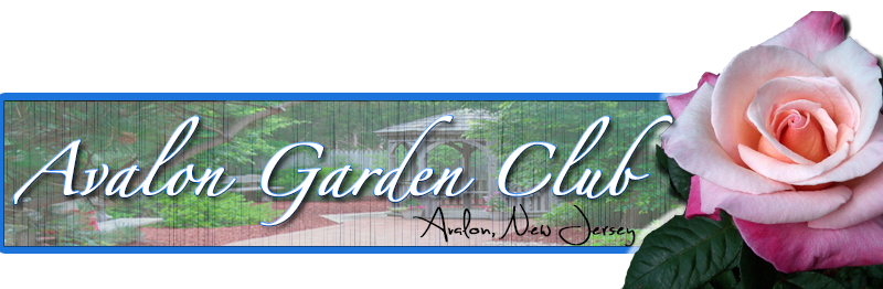 Avalon-Garden-Club-small