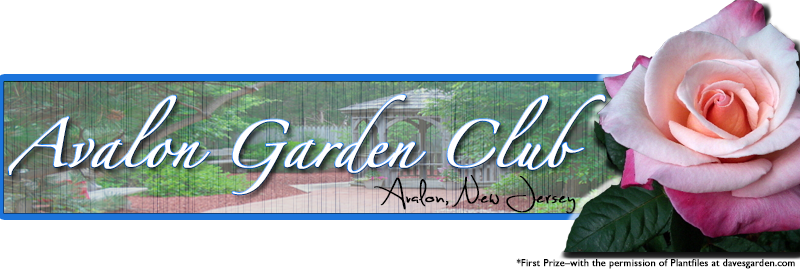 Avalon-Garden-Club-small2